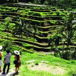 Wisata Pedesaan Populer di Yogyakarta