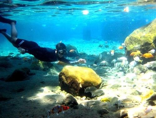 diving di umbul ponggok