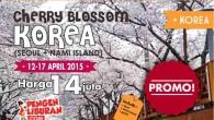 paket tour korea 2015 april