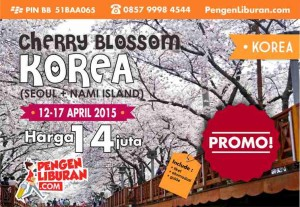 paket tour korea 2015 april