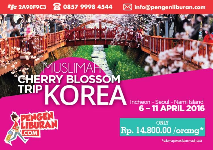 Tour Paket Wisata Korea Muslim April 2016